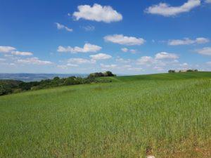 ITALY Puglia Basilicata countryside cycling bikepacking tours gravel offroad genuine