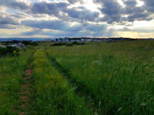 Puglia Italy tour landscape matera murgia hiking