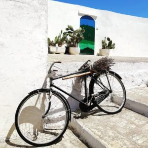 BICYCLE RESTAURATION
