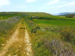Puglia Italy tour landscape seascape otranto sant'emiliano
